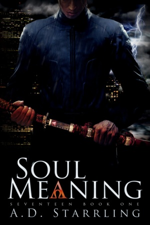 Soul_Meaning-800-Height