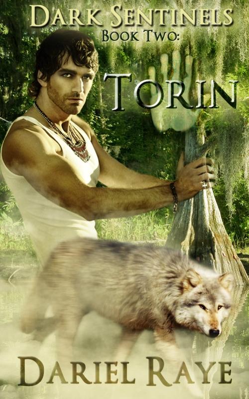 Torin_final cover
