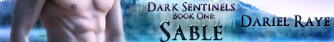 Dark Sentinels banner